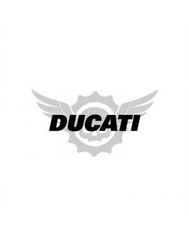 Vinilo Ducati
