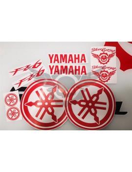 Kit Adhesivos Yamaha FZ6